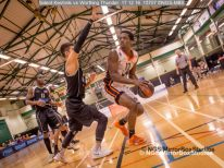 Solent Kestrels vs Worthing Thunder