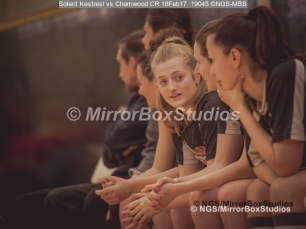WNBL Division 1 - 18 February, 2017 - St Marys Leisure Cent. : The bench during match between Solent Kestrels Women and Charnwood CR (Photo by NGS/MirrorBoxStudios)