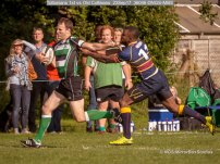 Tottonians 1st vs Old Colfeians